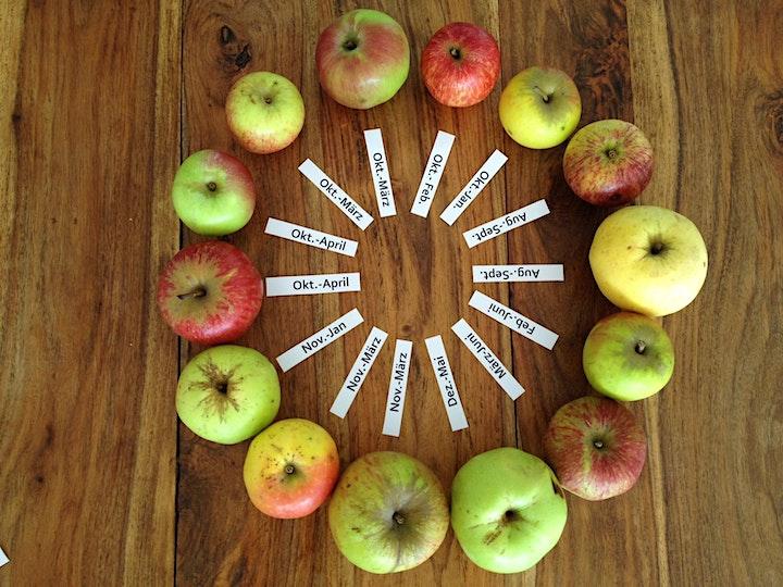 Einladung zum überraschenden Apfel-Erlebnis-Abend: Bild