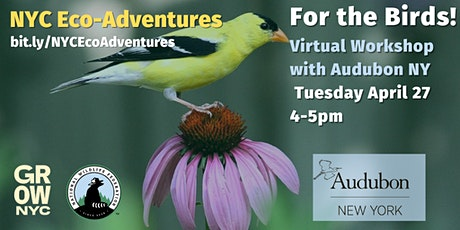 For the Birds! (Virtual Workshop) tickets