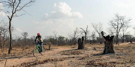 ONLINE: Conversation Piece: Miti Yangu Reforesting Project, Zimbabwe Tickets