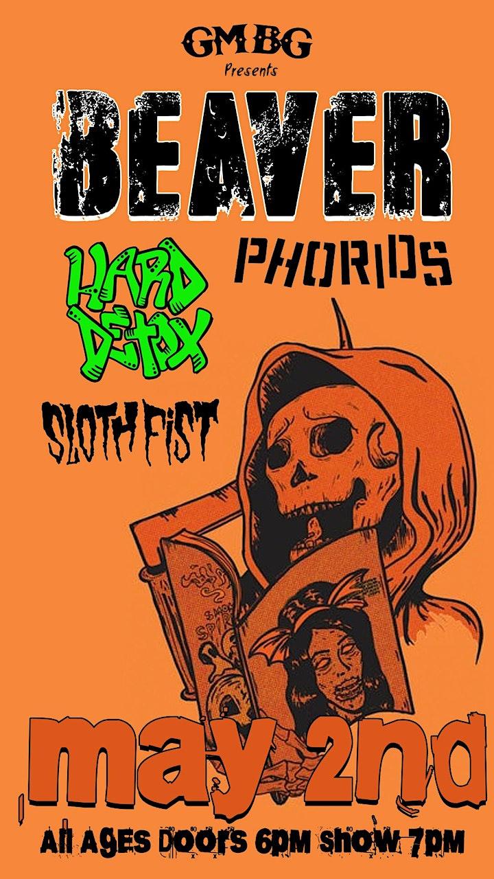 Beaver, Hard Detox, Phorids, Sloth Fist image