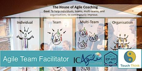 Agile Team Facilitator (Online, August 2021) tickets