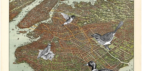 Brooklyn Birding Hotspots - Green-Wood Cemetery tickets