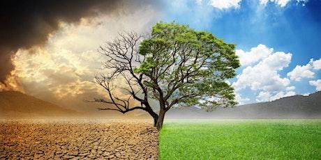 Ecología y Judaísmo entradas