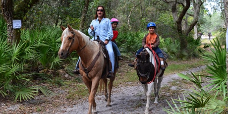 Celebrating the Florida Cracker Horse at Dunns Creek State Park tickets