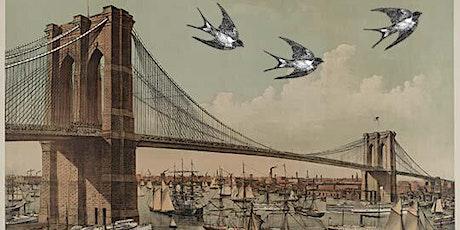 Brooklyn Birding Hotspots - Brooklyn Bridge Park tickets