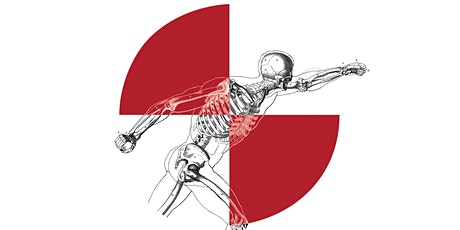 16th Annual Injury Biomechanics Symposium tickets