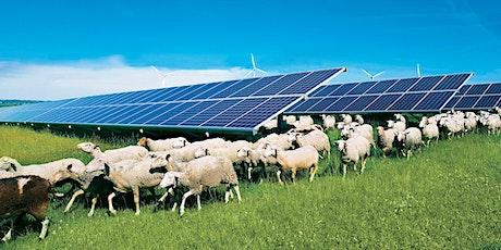 Bald Mountain Solar Farm Virtual Open House tickets