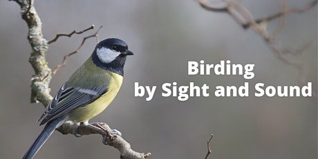 Birding by Sight and Sound tickets