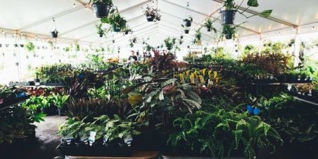 Sydney - Huge Indoor Plant Warehouse Sale - Safari Party tickets