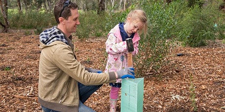 River Torrens Recovery Project planting tickets
