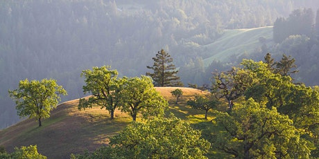 Guided Virtual Hike: Pole Mountain 4-29-21 tickets