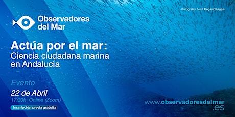 Actúa por el mar, ciencia ciudadana marina en Andalucía entradas