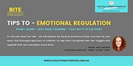 BITE-SIZED:  TIPS TO - EMOTIONAL REGULATION tickets