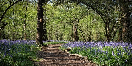 Perivale Wood Open Day Morning tickets