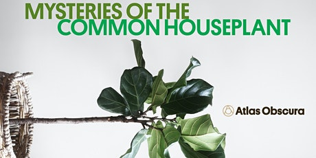 Mysteries of the Common Houseplant tickets