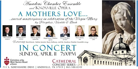 Cathedral Concert: Amadeus Chamber Ensemble & Knoxville Opera tickets