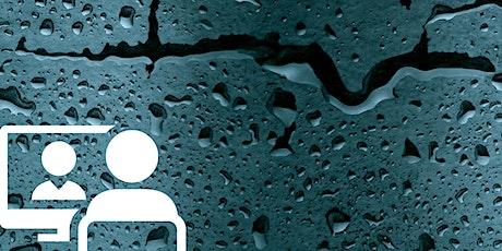 WEBINAR INGEGNERI | Sistemi impermeabili continui a regola d'arte biglietti