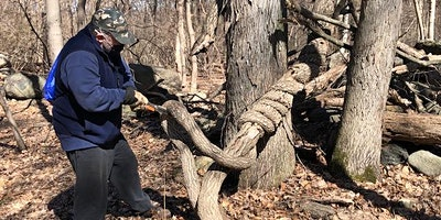 Invasive Plant Management at Pocantico Lake