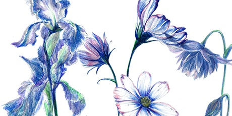 Botanical Drawing Class tickets
