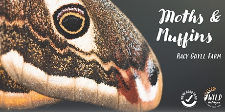 Moths & Muffin Mornings | Racy Ghyll tickets