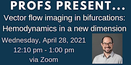 PROFS PRESENT ... Vector flow imaging in bifurcations: Hemodynamics tickets
