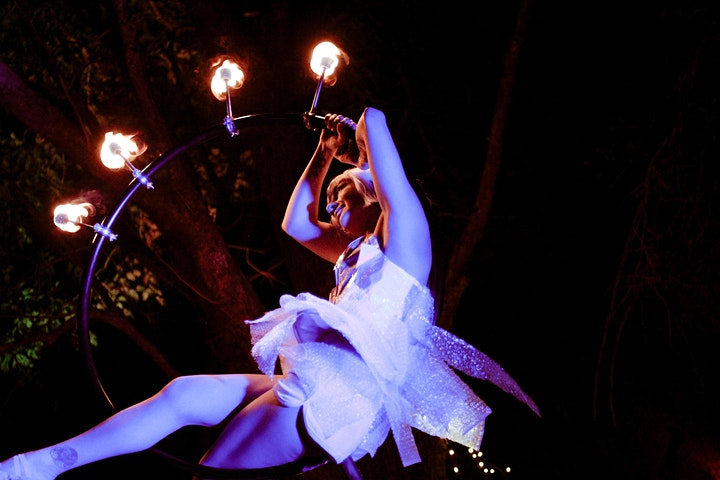 The Enchanted Forest Immersive Dinner Show image