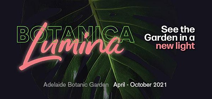 Botanica Lumina - Botanic Garden by Night image
