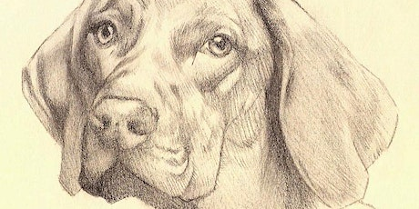 Animal Portrait Drawing on Zoom tickets