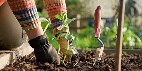 Community garden planting workshop tickets