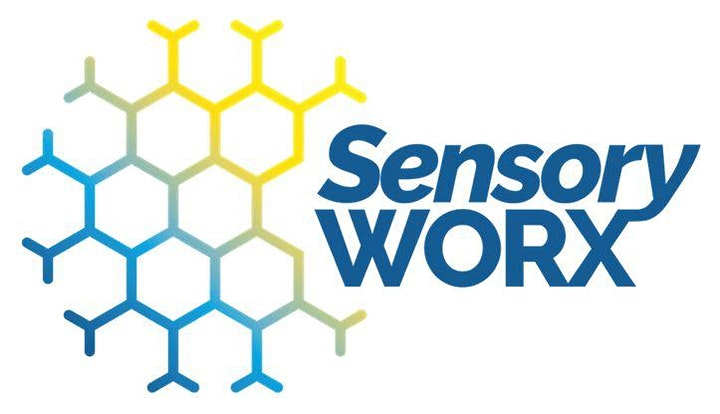 Understanding Sensory Processing webinar image