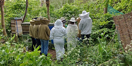 Introduction to Beekeeping Course tickets