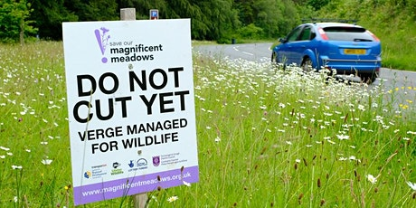 Life on the Edge: creating and managing wildlife-friendly verges tickets