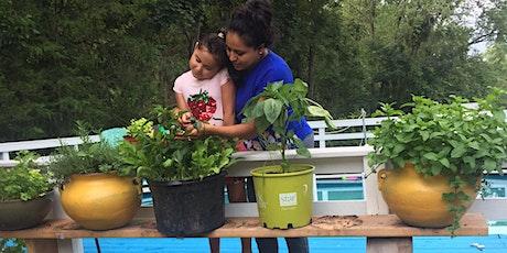 Vegetable Gardening for Beginners tickets