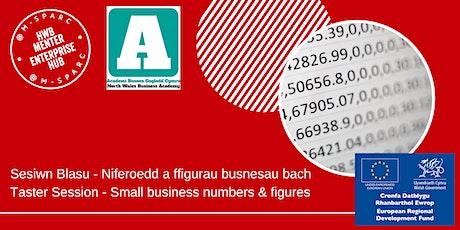 Niferoedd a ffigurau busnesau bach/Small business numbers & figures -Taster tickets