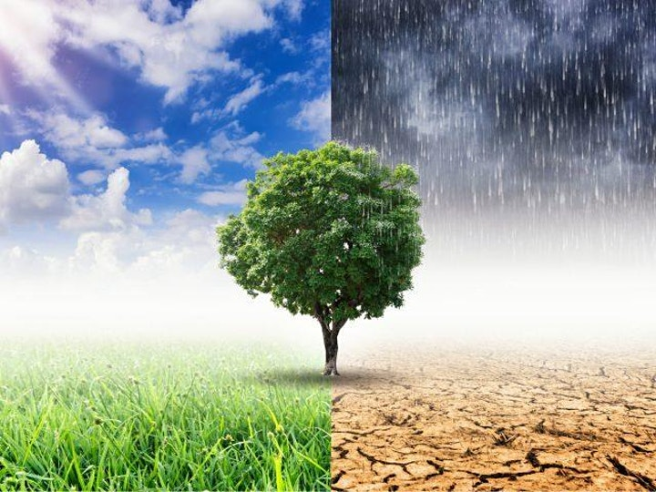 Virtual Field Trip with Ashokan Center: Climate Science Parts 1& 2 image