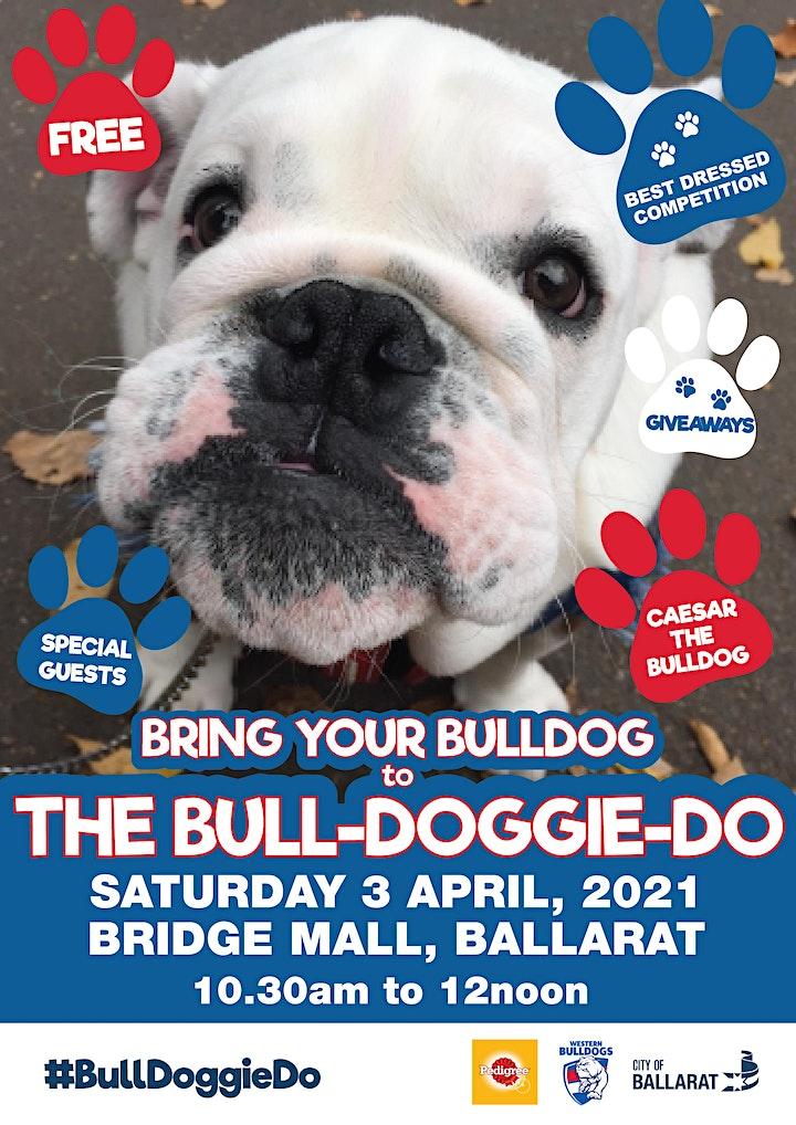 2021 Ballarat Bull Doggie Do image