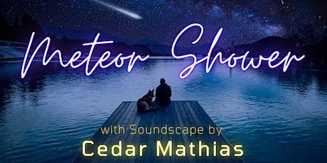 Meteor Shower Livestream Feat. Cedar Mathias tickets