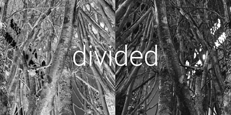 ONLINE WORKSHOP: Divided - An evening of life drawing, performance & music tickets