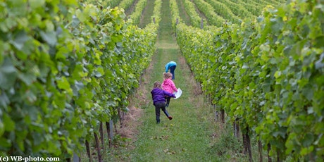 Easter Trail at Albury Vineyard tickets