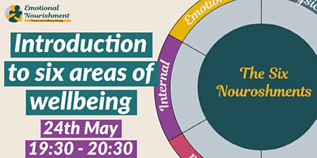 Introduction to six areas of wellbeing tickets