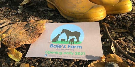 Bale's Farm  Outdoor Learning Open Day - 8th July 2021 tickets