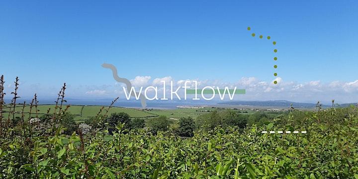 Walk ~ Flow : Thursday 24th June, Bolton-le-Sands image