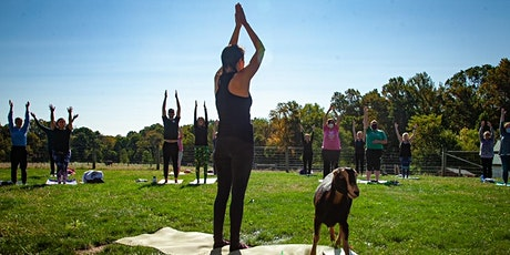 Yoga At Lancaster Farm Sanctuary tickets