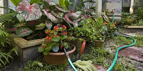 Water Wise Workshop: Using Rainwater in Your Florida-Friendly Landscape tickets