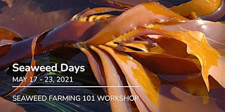 Seaweed Farming 101 - Professional Development Workshop tickets