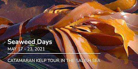 Seaweed Days - Catamaran Kelp Tour tickets