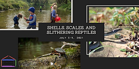 Cornerstone Nature Camp - Shells, Scales & Slithering Reptiles - July 5-9 tickets
