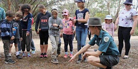 Junior Rangers Nature Treasure Hunt - Serendip Sanctuary tickets