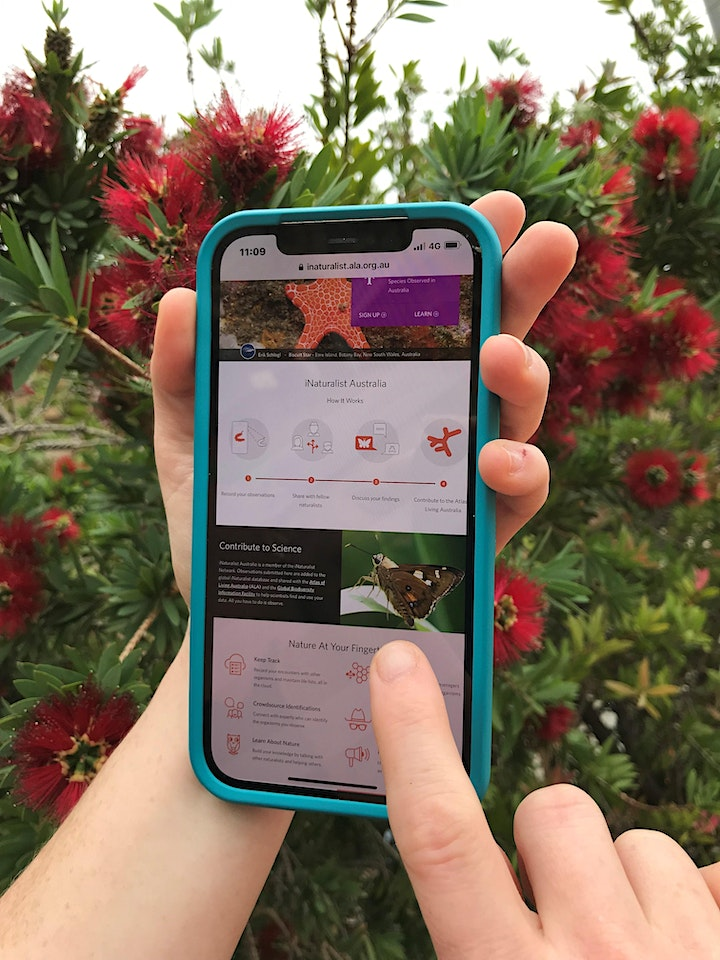 Discovering the Natural World with iNaturalist image