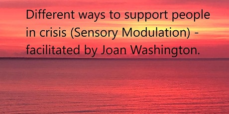 Different ways to support people in crisis (Sensory Modulation) tickets